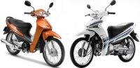 Nên mua xe hãng Yamaha hay Honda